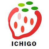 ICHIGO日本ビジネス文化センター