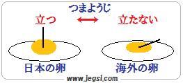 海外と日本の玉子の違い
