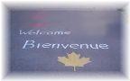 カナダの小学校で募集