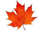 カナダの象徴