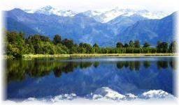 NZ日本語教師環境エコボランティア