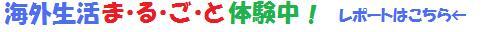 日本語教師体験レポート